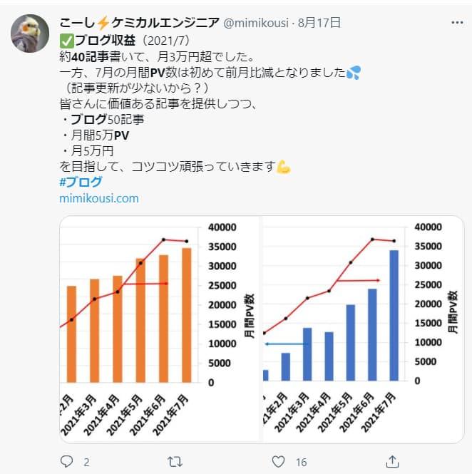 ブログ40記事達成!PVページビュー数(アクセス数)と収益の事例2